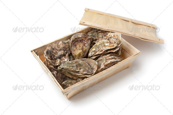 Fresh raw oysters - Stock Photo - Images