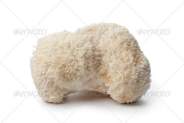 Cauliflower mushroom - Stock Photo - Images