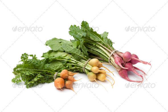 Fresh variety of baby vegetables - Stock Photo - Images