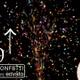 Confetti Celebration - VideoHive Item for Sale
