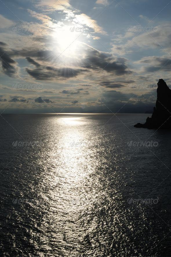 The night sea