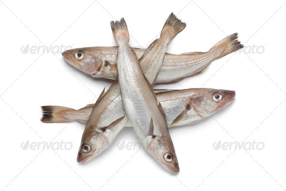 Fresh raw whiting - Stock Photo - Images