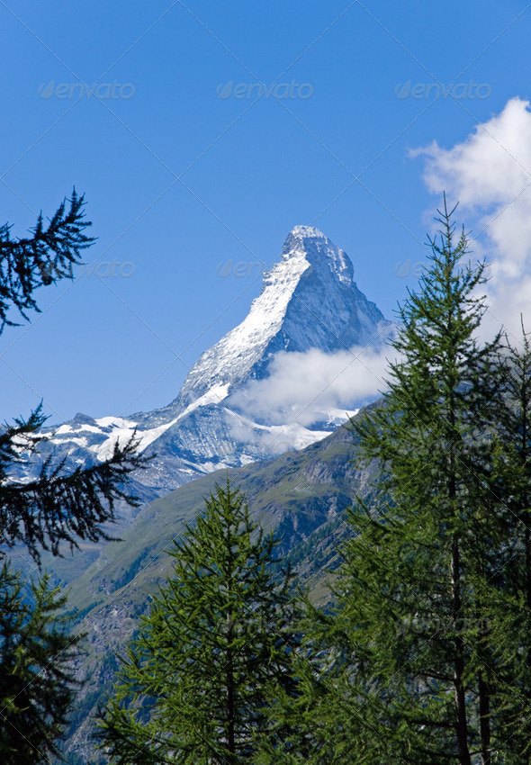 The Matterhorn behind some trees - Stock Photo - Images