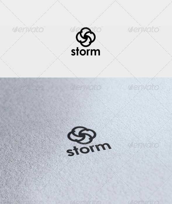 Storm Logo - Vector Abstract