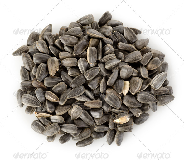Sunflower seeds isolated - Stock Photo - Images