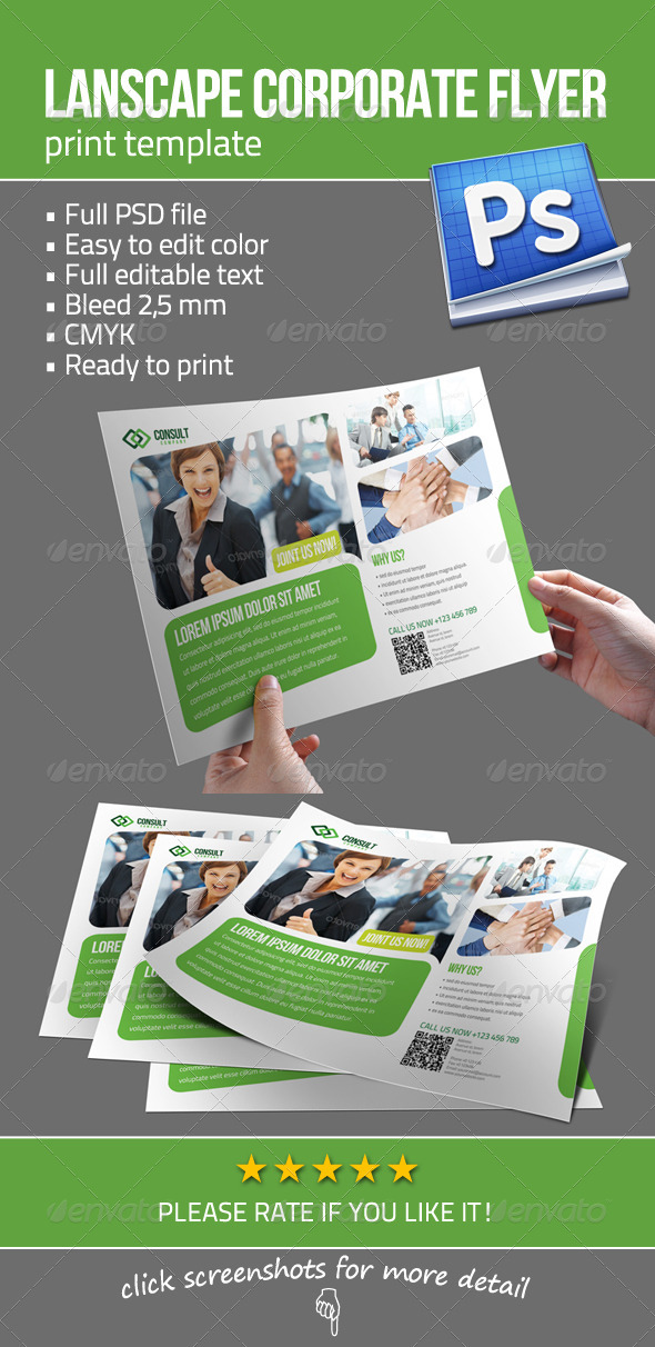 Lanscape Corporate Flyer - Corporate Flyers