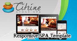 Citrine STONE SPA Responsive Template