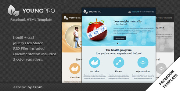 Youngpro HTML Facebook Template - Marketing Corporate