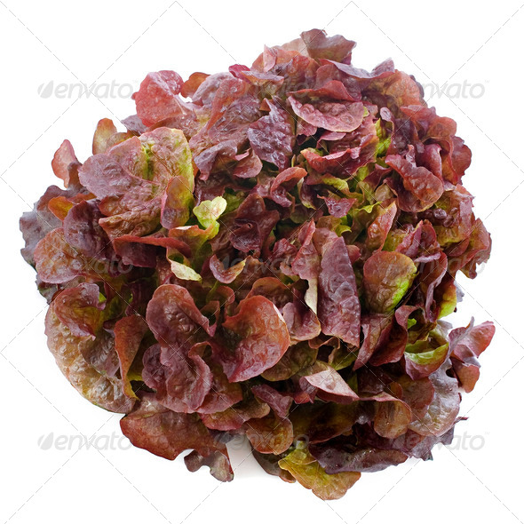 red salad - Stock Photo - Images
