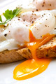 Poached Eggs on Toast - PhotoDune Item for Sale