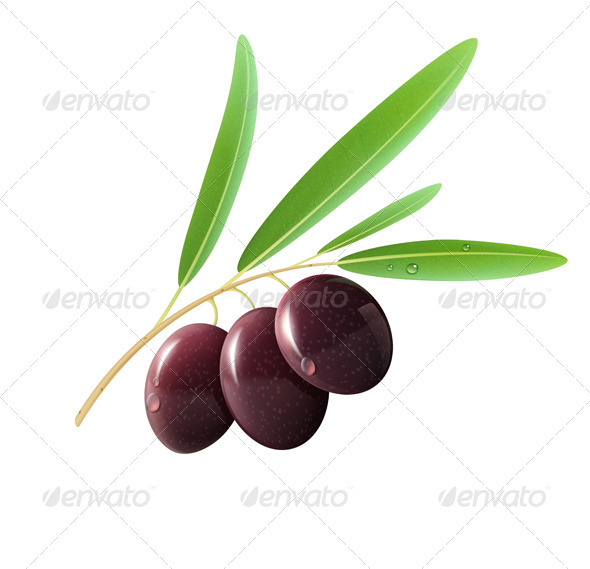 Three Black Olives - Organic Objects Objects