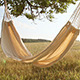 Hammock Swinging On The Wind At Sunset - VideoHive Item for Sale