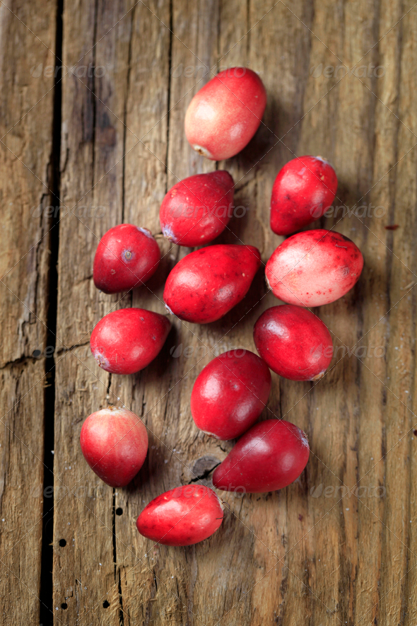 Fresh cranberries - Stock Photo - Images