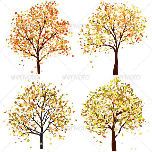 Set of Four Autumn Trees - Seasons Nature