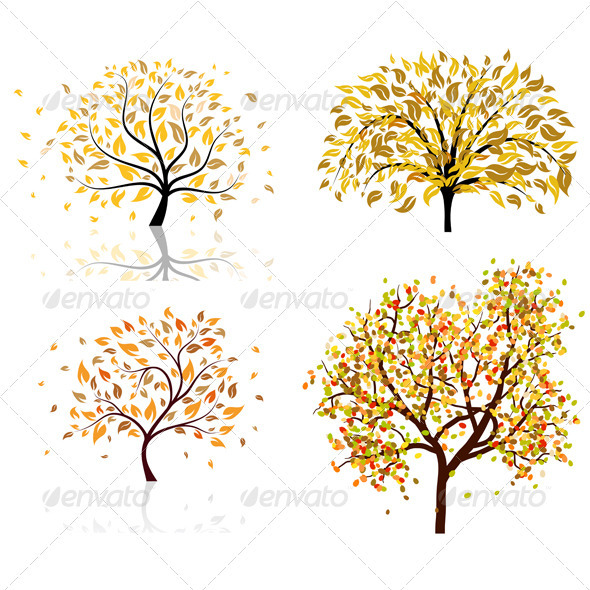 Set of Four Autumn Trees - Seasons Nature