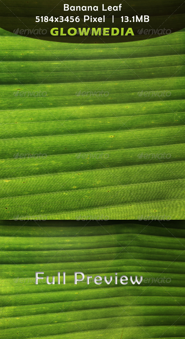 Banana Leaf - Nature Textures