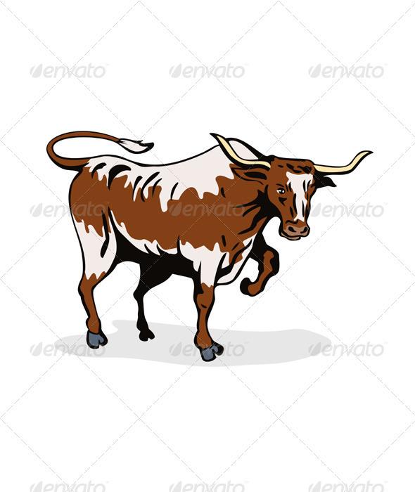 Texas Longhorn Bull  - Animals Characters
