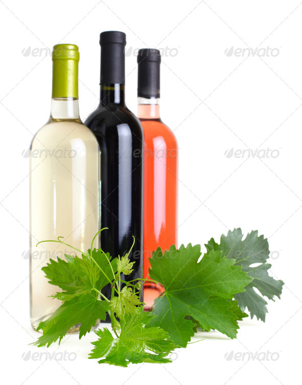 bottles of wine and the grapevine - Stock Photo - Images