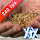 Wheat Seeds 240fps - VideoHive Item for Sale