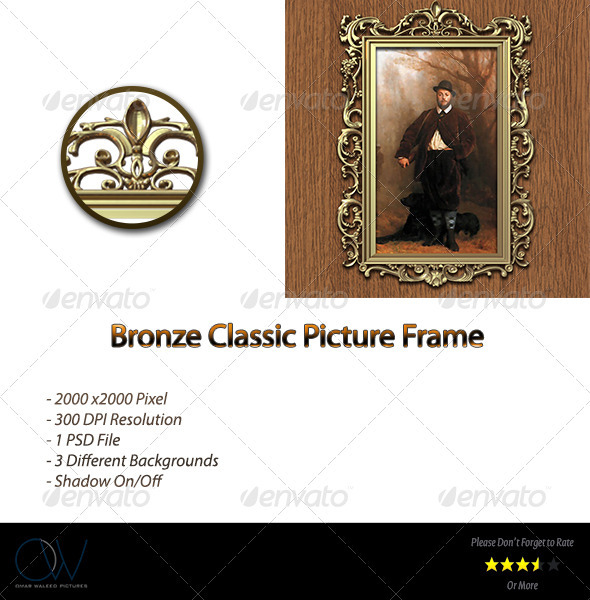 Bronze Classic Picture Frame - Artistic Photo Templates