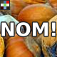 Chewing Crunchy Nut