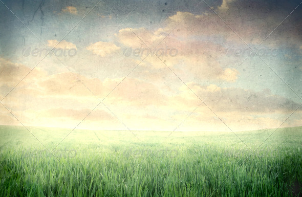 Large Field - Stock Photo - Images