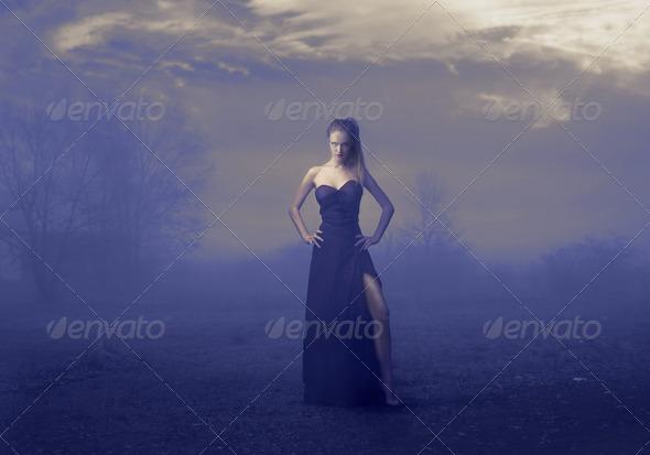 Elegant Fog - Stock Photo - Images