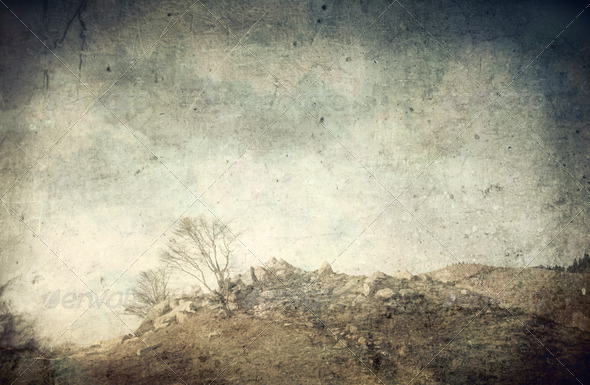 Wasteland - Stock Photo - Images
