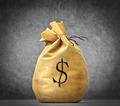 Bag of Money - PhotoDune Item for Sale