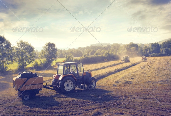 Tractor in the Countryside - Stock Photo - Images