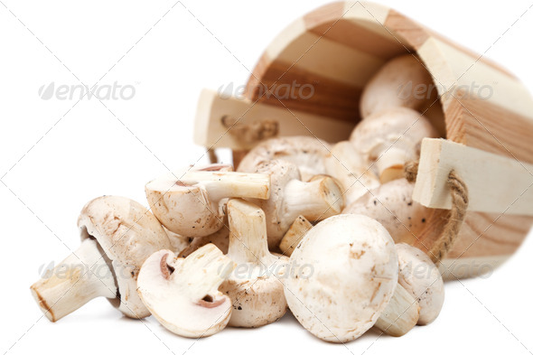 Mushrooms champignons spillage from the wooden bucket - Stock Photo - Images