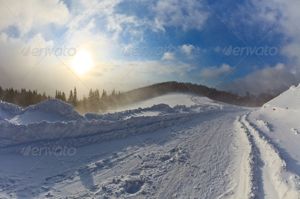 snowstorm - Stock Photo - Images