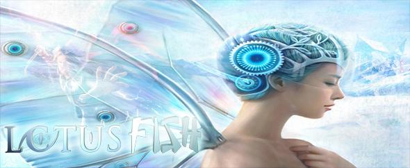 Lotus fish vh main art