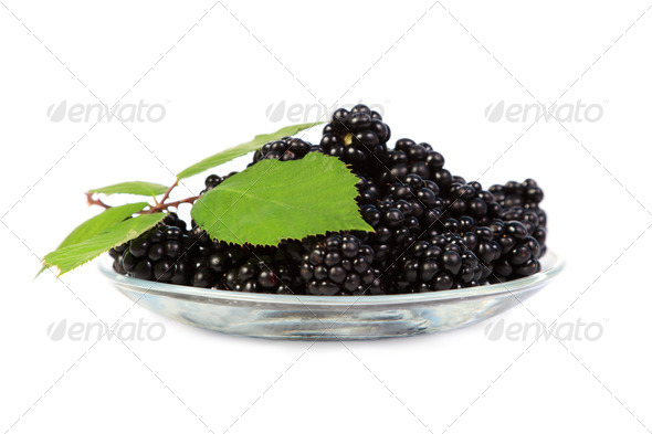 Blackberries with green leaves - Stock Photo - Images