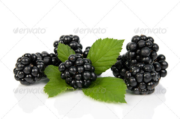 Blackberries with green leaves. - Stock Photo - Images
