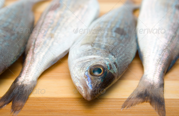 Spicara smaris - Stock Photo - Images