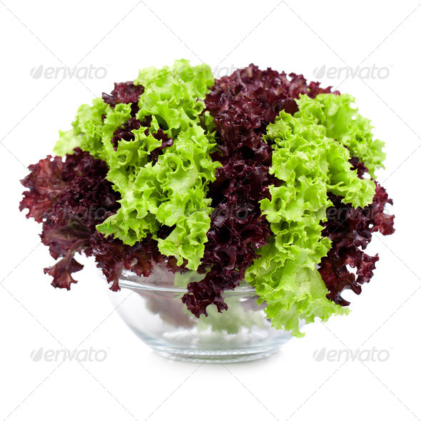 Leaves of salad in a bowl. - Stock Photo - Images