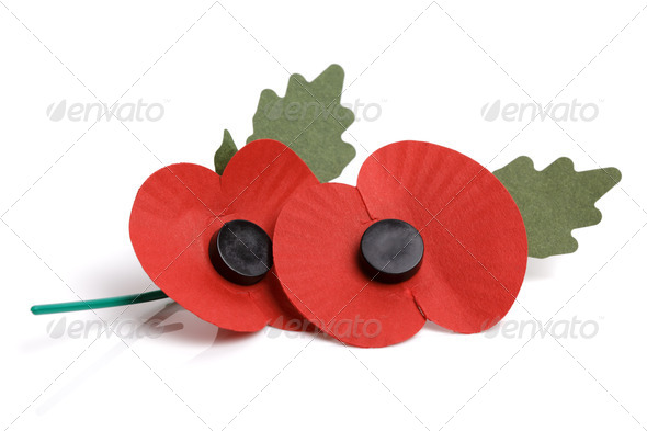 Remembrance sunday poppy - Stock Photo - Images
