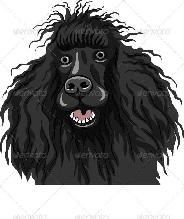 Vector Black Smiling Dog Poodle Breed - Animals Characters