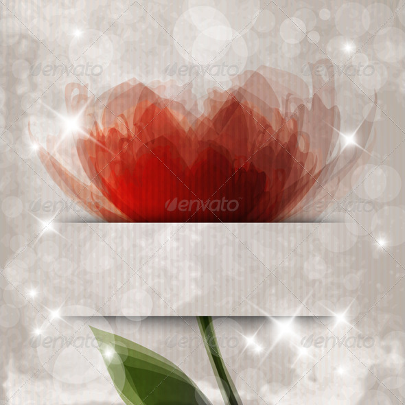 Orange Flower - Backgrounds Decorative