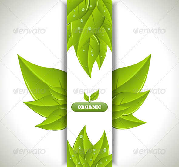 Eco Banner - Backgrounds Decorative