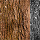 Wood Texture - GraphicRiver Item for Sale