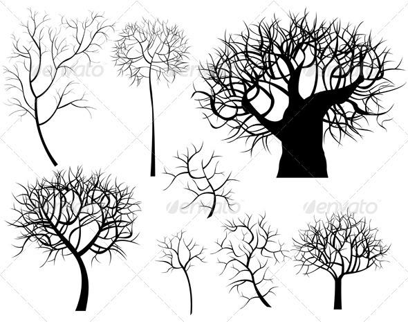 Trees - Flowers & Plants Nature