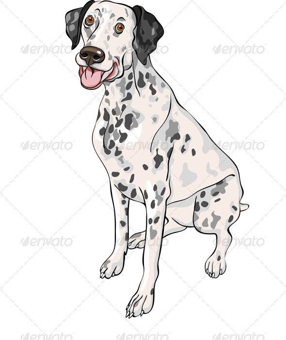 Vector Sketch Dog Dalmatian Breed Smiles - Animals Characters