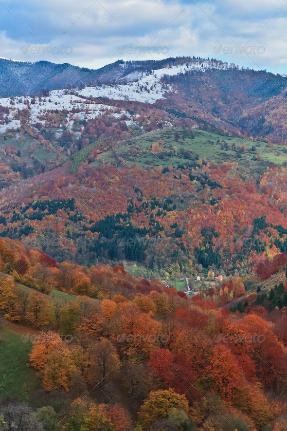 autumn landscape - Stock Photo - Images