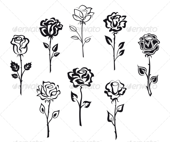 Set of Rose Flowers - Flowers & Plants Nature