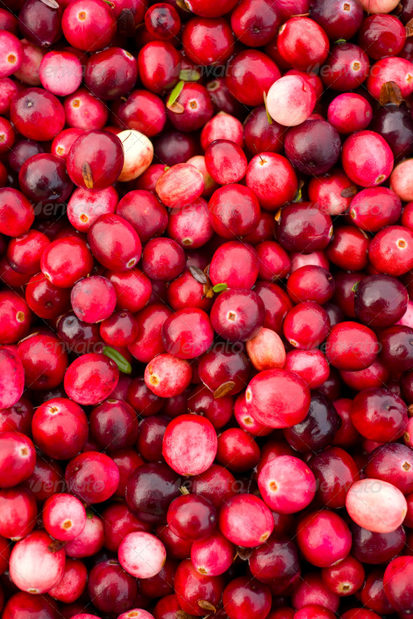 Cranberries - Stock Photo - Images