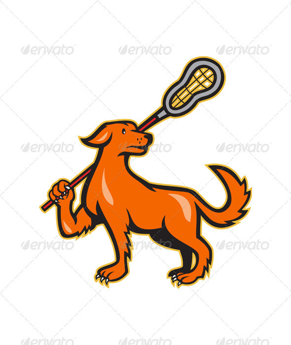 Dog With Lacrosse Stick Side View  - Animals Characters