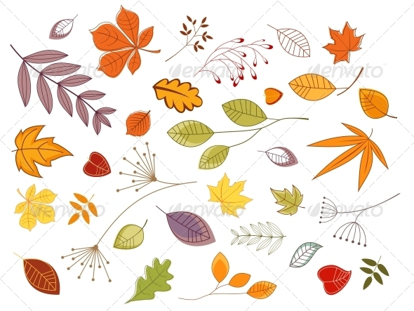 Autumnal Leaves and Plants - Seasons Nature