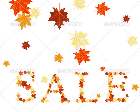 Maples Leaves Sale  - Seasons Nature